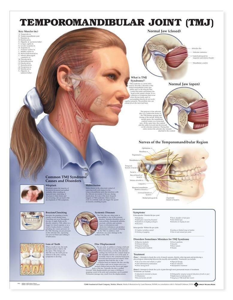 Tmj Pain Treatment In Rock Hill Kimble Chiropractic Center